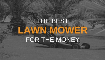 THE BEST LAWN MOWER FOR THE MONEY