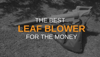 THE BEST LEAF BLOWER FOR THE MONEY